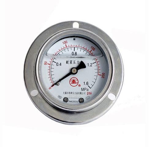 普通耐震压力表