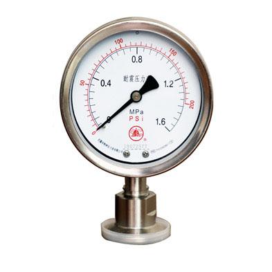 YTP系列隔膜压力