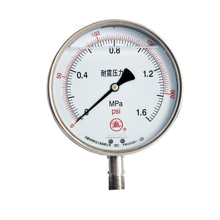 YNBF-100双刻度不锈钢耐震压力表