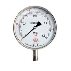 YNBF-100不銹鋼耐震壓力表
