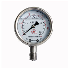 YNBF-100雙刻度不銹鋼耐震壓力表