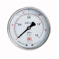 YN-60軸向無邊耐震壓力表