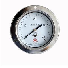YE-100轴向带边膜盒压力表