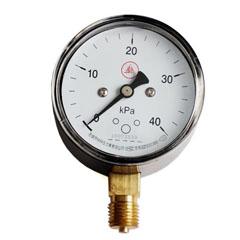YE-100径向膜盒压力表